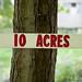 Ten Acres for Sale