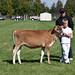 2011 Grand Valley Fall Fair
