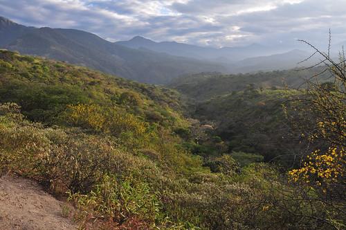landscape ecuador loja bellamaria santuariodeaves