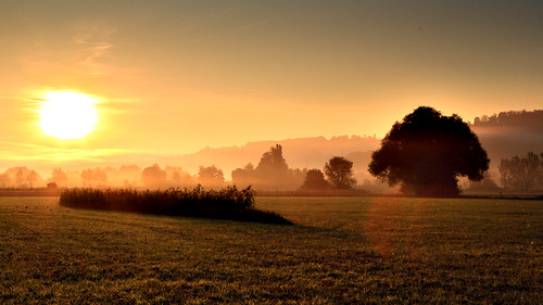 morning mist sunrise work canon way geotagged deutschland iso100 day nebel hard f16 lee 7d mehl sonnenaufgang deu tübingen badenwürttemberg morgennebel 2470 hagelloch gnd canon2470 125s ammertal eos7d unterjesingen michaelmehl geo:lat=4852250266 geo:lon=900591105 mehlname