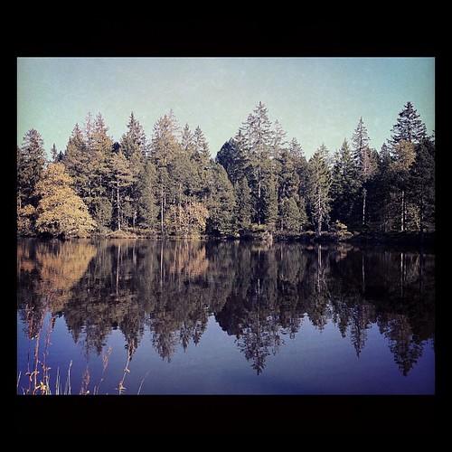 square squareformat iphoneography instagramapp uploaded:by=instagram foursquare:venue=4c42fa64d691c9b6d7138f0a
