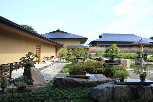 盆栽美術館 - bonsai museum