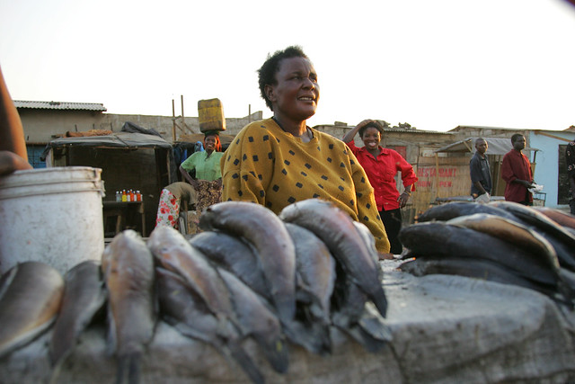 Woman selling fish in market, Zambia. Photo by Stevie Mann, 2007.
