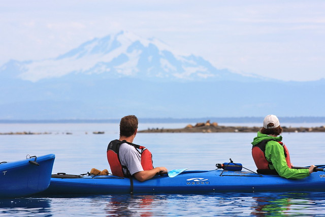 Sea Lions with Mt. Baker - Sucia Island Kayak Trip