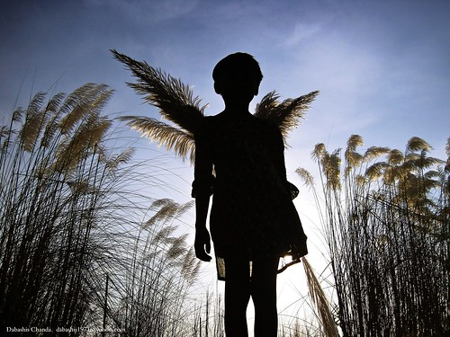 Fairy of a fertile land