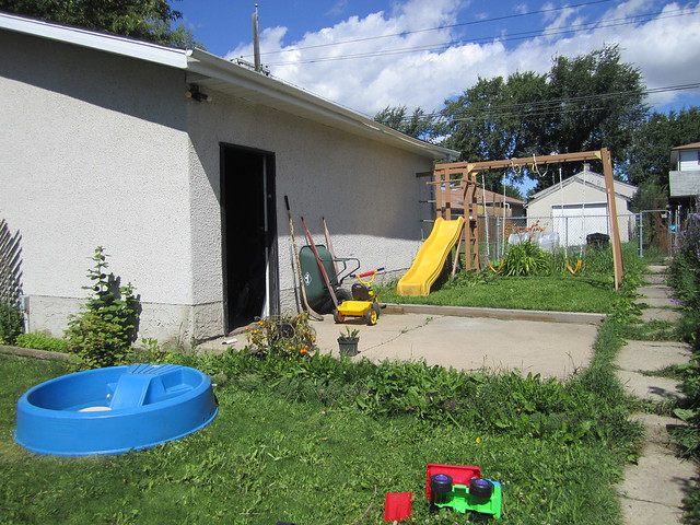 backyard definition meaning