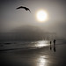 Brighton Beach - Low Tide and Sea Fog by Alan MacKenzie
