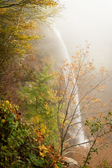 Kaaterskill Falls in Fog