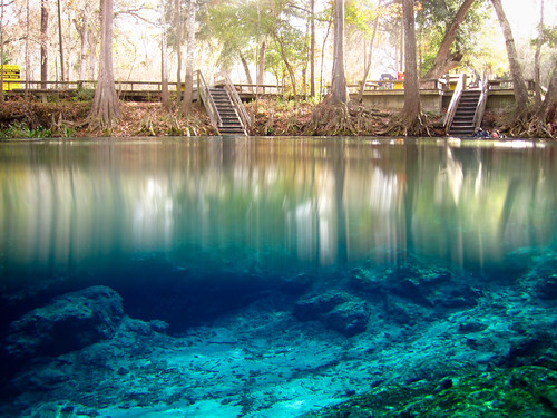 park water spring florida clear springs freshwater ginniesprings
