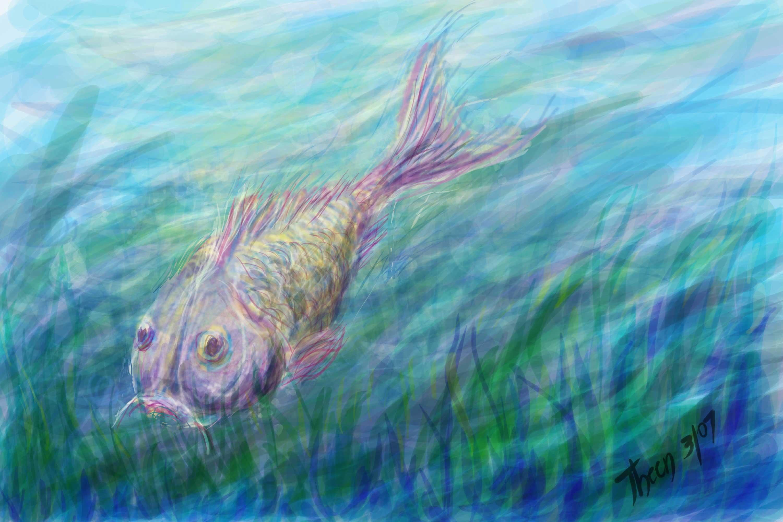 Swimming fish flickr photo sharing for Fish swimming backwards