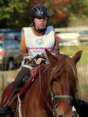 animal sports, horse racing, equestrianism, english riding, racing, eventing, equestrian sport, rein, sports, race, endurance riding, bridle, horse,