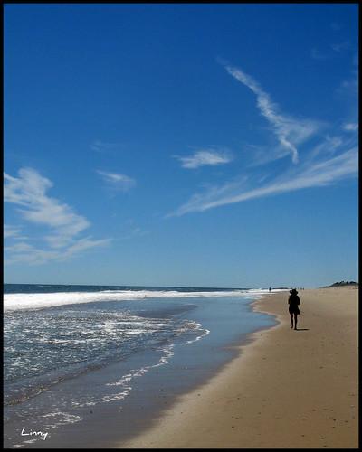 ocean beach blinkagain