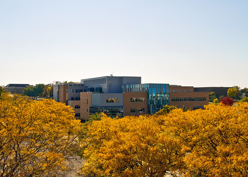 building fall college uw leaves wisconsin campus whitewater university business wi academic hyland