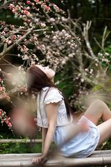 [フリー画像素材] 人物, 女性 - アジア, 人物 - 見上げる, 人物 - 目を閉じる, 台湾人, 人物 - 森林 ID:201212021800