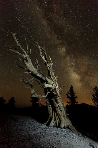 The Elusive Milky Way – How to Find It! | StarCircleAcademy com llc