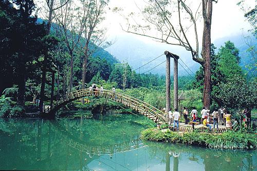 Y825溪頭大學池-竹橋