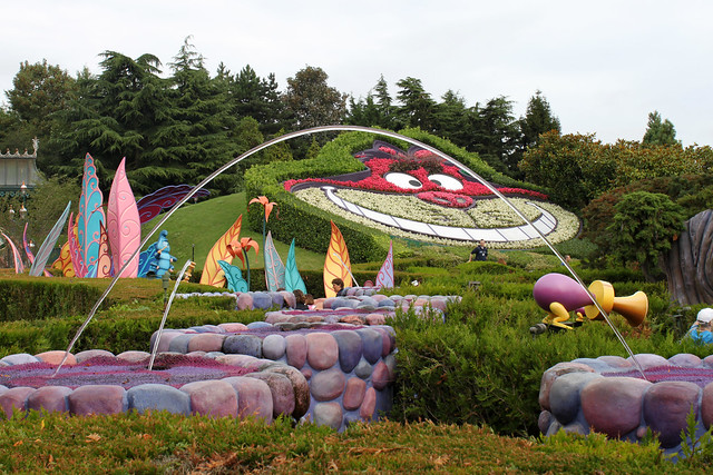 View across Alice's Curious Labyrinth