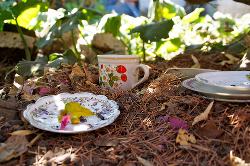 squirrel tea party