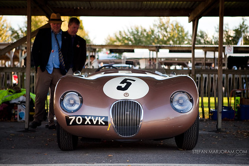 C Type Jaguar