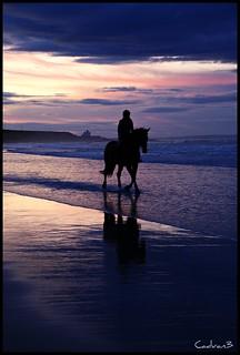 The Rider.
