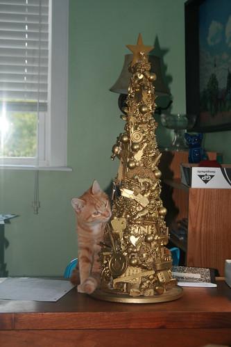 """Cedar checks out the """"I Spy"""" tree"""