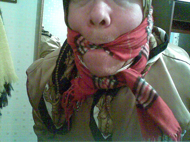 check wool scarf gagged and bound explore blanketson
