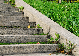 (278/365) Steps