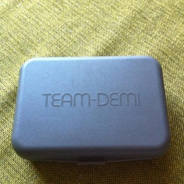 我が家では二十数年前に買ったTEAM-DEMIが今だに現役で活躍しています。