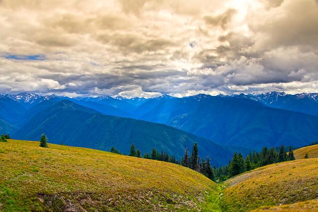 Hurricane Ridge - Olympic National Park, Washington