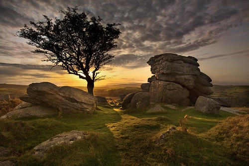 sunset cloud tree canon landscape evening devon granite dartmoor