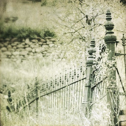 canon fence square gate cemetary faded hillside ironfence idahosprings idream texturesquared t1i fencefriday