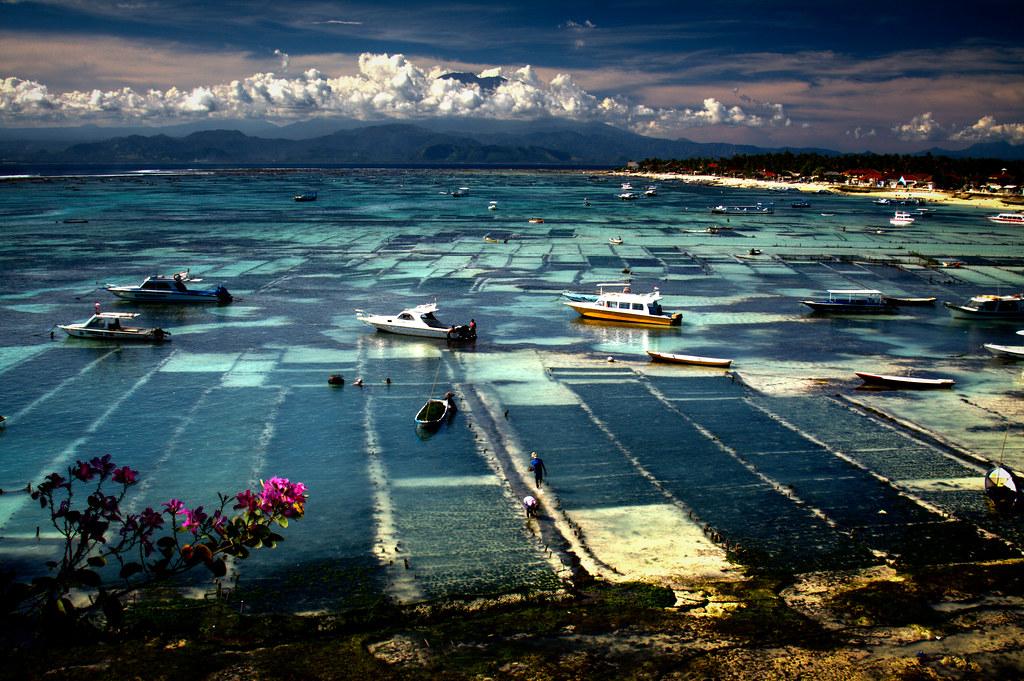 the view from Batu Karang resort