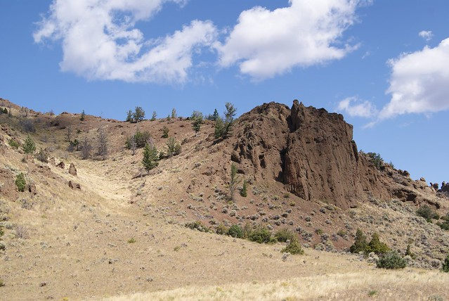 Near Yellowstone National Park East Entrance Flickr