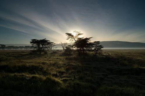 kenya ken landschaft nakuru ort ereignis lakeviewestate bildinhalt kenyazanzibar2007