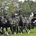 Paard en wagen uit vervlogen tijden