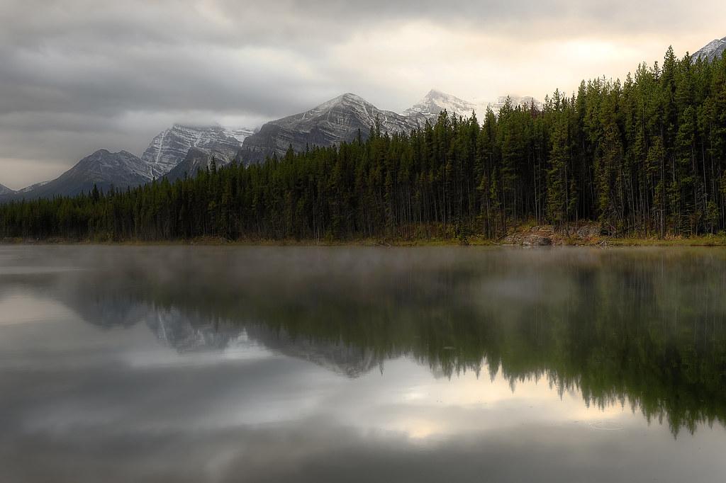 Herbert lake morning mist
