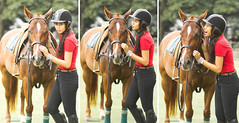 polo(0.0), pack animal(0.0), jockey(0.0), animal sports(1.0), equestrianism(1.0), equestrian sport(1.0), rein(1.0), sports(1.0), horse(1.0),