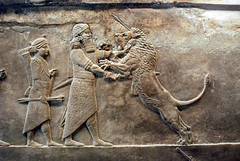 Lion Hunt, from the frieze of the royal palace of Ashurbanipal, by Jan van der Crabben