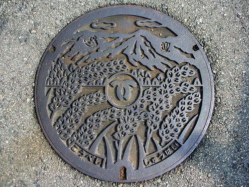 Kobe Hyogo manhole cover2(兵庫県神戸市のマンホール2)