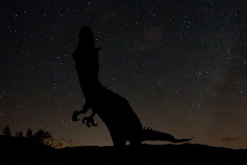california sky night stars geotagged desert sheep meadows statues bighorn anzaborrego sculptures galleta galletameadows geo:lat=331989483666668 geo:lon=116351165733333
