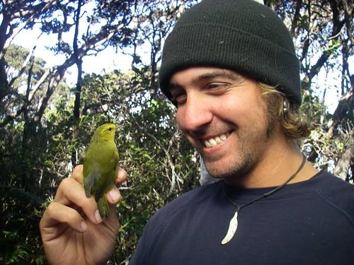 Peter Motyka holds a Maui 'Alauahio.