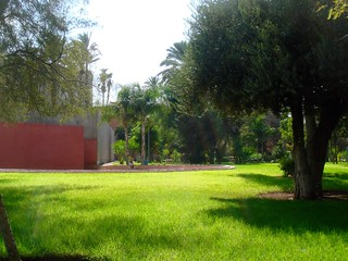 Walk in Park Downtown Marrakech