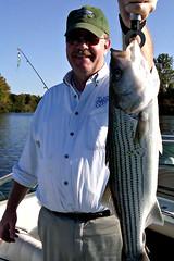 bass, fish, fishing, recreation, recreational fishing, jigging,