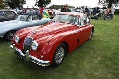 automobile, jaguar xk140, vehicle, jaguar xk150, antique car, classic car, vintage car, land vehicle, luxury vehicle, sports car,