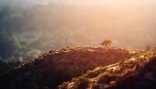 Hilltops (Explored)