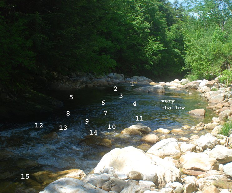 Classic Tuesday Tip: How to Fish a Mountain Stream