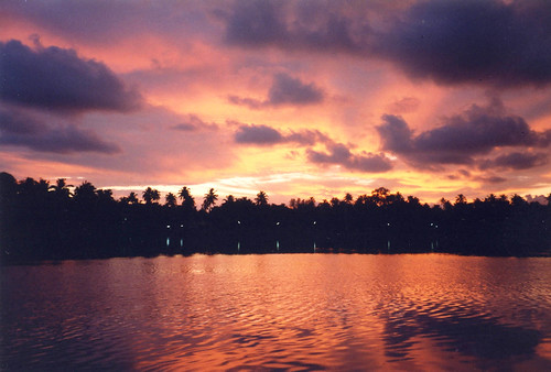 sunset india kerala ilp kollam backwaters quilon coconutpalms theindiatree worldtrekker