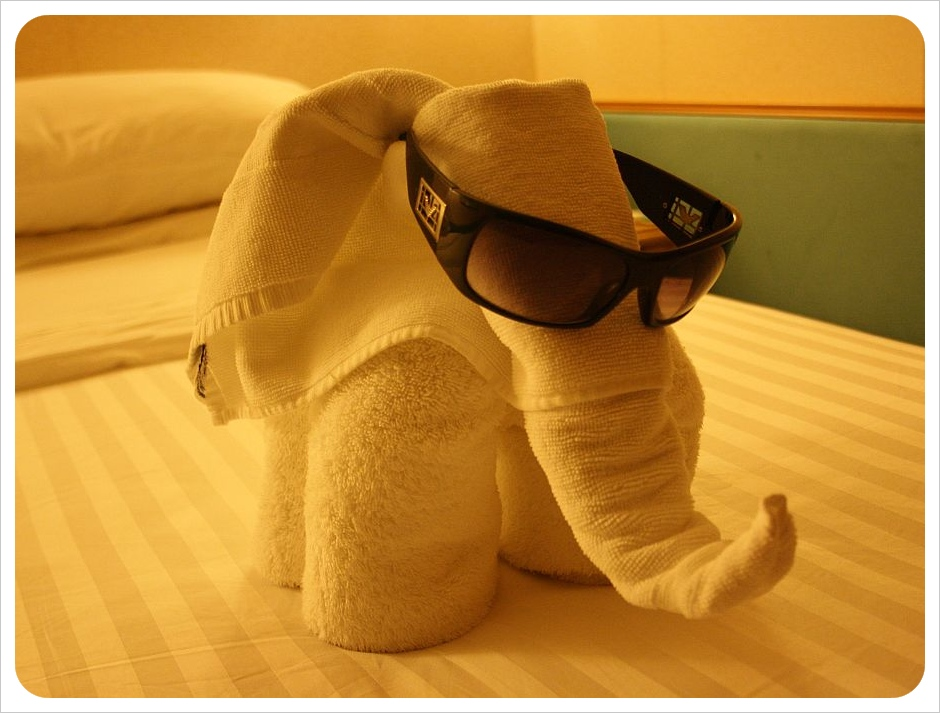 cruise ship towel elephant