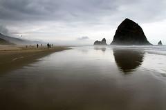 :230/365: Oregon coast by alexandra:b