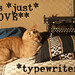 cats and typewriters
